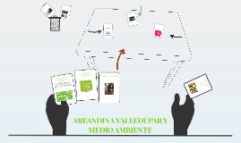 AREANDINA Y MEDIO AMBIENTE