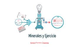 Minerales y ejercicio