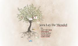 3era Ley De Mendel