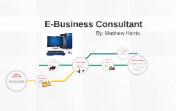E-Business Consultant