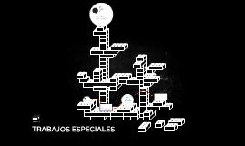TRABAJOS ESPECIALES
