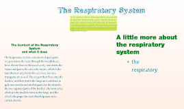 Copy of The Respiratory and Circulatory Systems and How They Interact