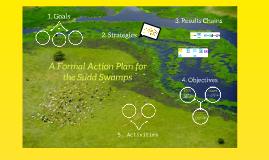 A Formal Action Plan for the Sudd Swamps