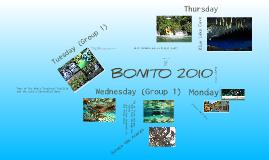 Bonito Trip Introduction
