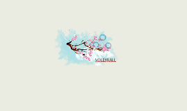 VOLEYBALL