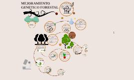 Copy of Copy of Copy of Métodos de mejoramiento de árboles forestales