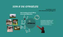 Gyngeleg - UCL Lillebælt