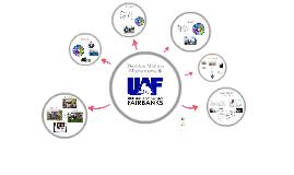 Decision Making Mechanisms at UAF