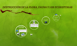 DESTRUCCIÓN DE LA FLORA, F