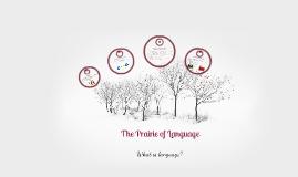 ToK: Language