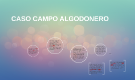 Copy of CASO CAMPO ALGODONERO