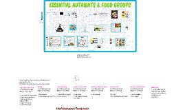 Essential Nutrients & Food Groups
