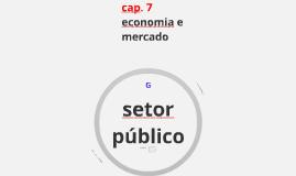 Cap 7 - Setor público