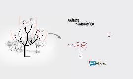 Copy of ANÁLISIS Y DIAGNÓSTICO