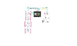 Copy of Catabolismo de proteínas