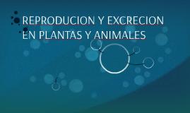 REPRODUCION Y EXCRECION EN PLANTAS Y ANIMALES