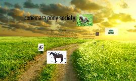 conemara pony society