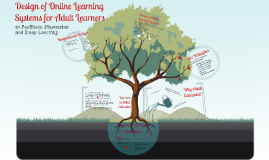 Design of Online Learning Systems for Adult Learners
