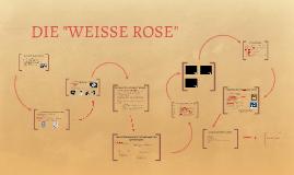 Copy of DIE WEISSE ROSE