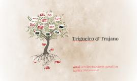 Trigueiro & Trajano LTDA