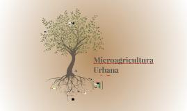 Microagricultura Urbana: Taller CITNOVA 12.08.2016