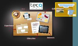 Teca se crea a raíz de la agrupación de profesionales en el