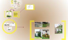 SYG Nursery Landscape