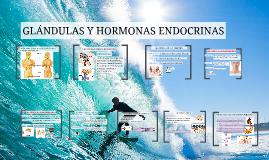 Copy of hormonas y glándulas humanas