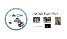 Copy of Zoo