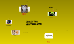 Copy of Classifying Vertebrates 