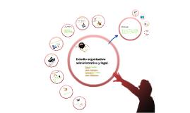 Copy of Estudio organizativo, administrativo y legal