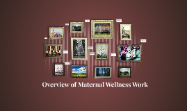 Overview of Maternal Wellness Work