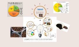 les dattes: un réel élément du développemnt durable
