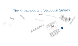 kinesthesis and psychology Some people might argue that humans have more than five senses in fact, a large section of psychology believes that there are seven senses these two additional.