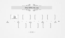ZACATECAS 229