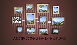 LAS OPCIONES DE MI FUTURO