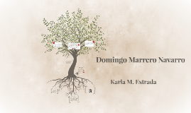 Domingo Marrero Navarro