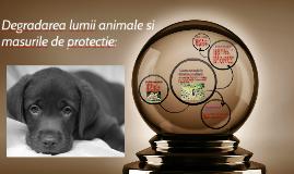 Copy of Copy of Degradarea lumii animale si masurile de protectie