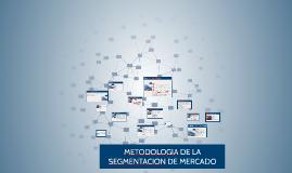 Copy of METODOLOGIA DE LA SEGMENTACION DE MERCADO