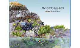 Description of Rocky Intertidal