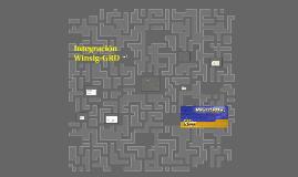 Integración Winsig-GRD