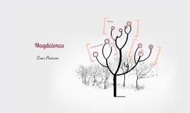 Copy of Magdalenas