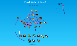 Food Web of Brazil