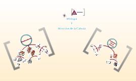Miología y Músculos de la Cabeza
