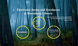 Copy of Ebooks & Databases at Rosenberg Library in Galveston