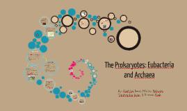 The Prokaryotes: Eubacteria and Archaea