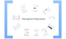 Clase 2 - Marcadores Moleculares