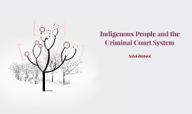 Indigenous People and the Criminal Court System