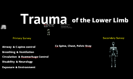 Lower Limb Trauma