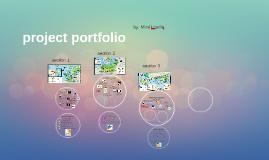 Copy of project portfolio
